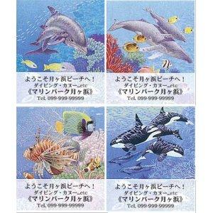 画像1: 海の生き物のデザイン