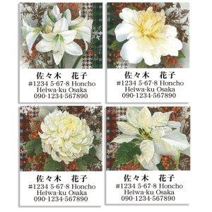 画像1: 白い大きな花が美しいデザイン