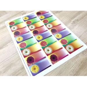画像4: 元気な色のお花デザイン!