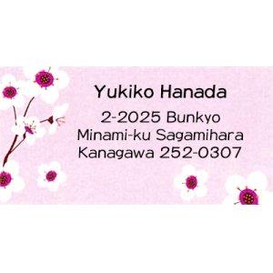 画像1: ピンクと白い小花(白梅?)のワンポイント!