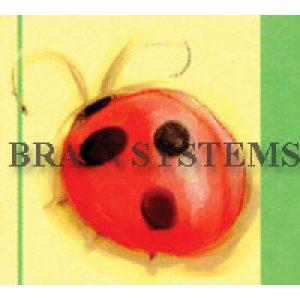 画像2: パステルカラーの可愛い虫たちのアドレスラベル