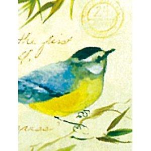 画像3: 水彩画で描かれた鳥のデザイン!