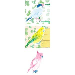 画像2: 鳥、インコのアドレスラベル!